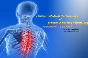terminology anatomy training
