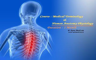 Terminology & Anatomy (1 Month) -Online / Onsite