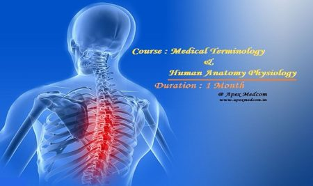 Terminology & Anatomy is backbone of  Medical coding & CPC