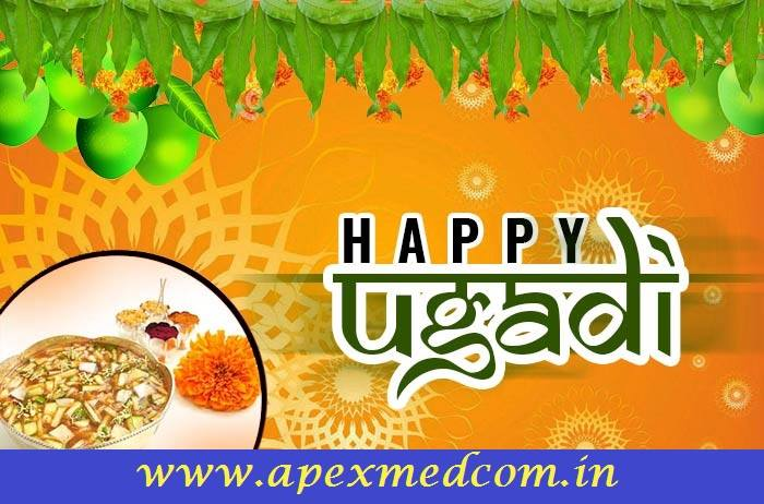 ugadi celebrations at Apex Medcom